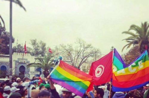 Article : Oh toi l'homophobe, tu n'es pas seul !